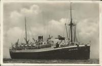 SMN181