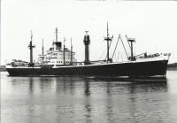 SMN275