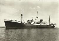SMN435